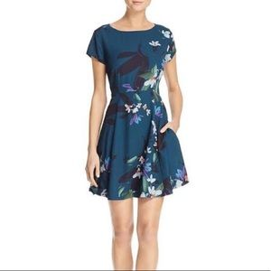 NWT! French Connection Swing Dress